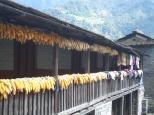 Nepal 2008 2 683