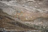 2011 Cordillera Blanca Climbs Med Resolution-12