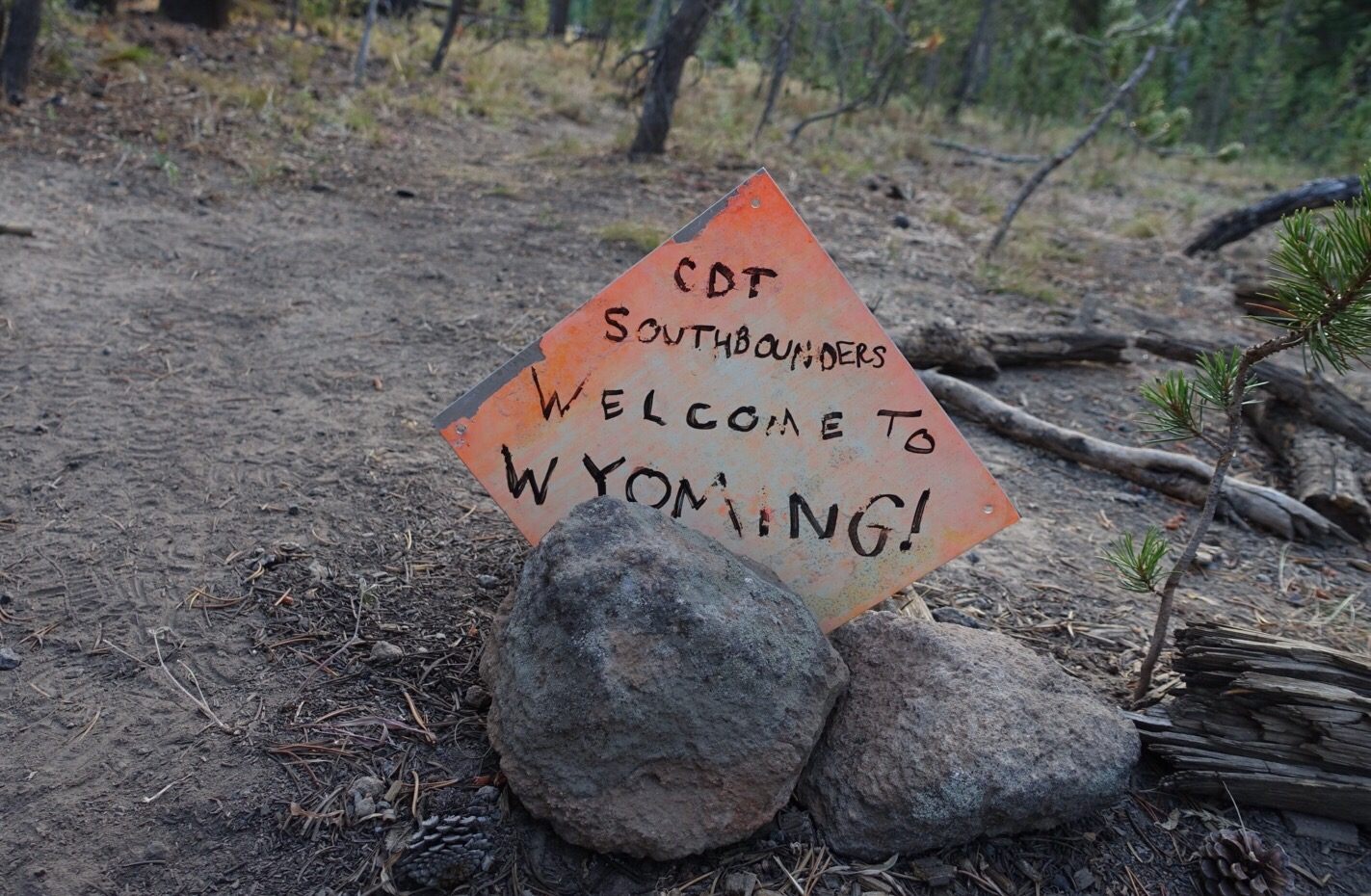 Wyoming! (Lima, MT to Yellowstone NP, WY)